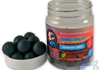 Soluble Boilies Euro Series Cranberry-Squid.